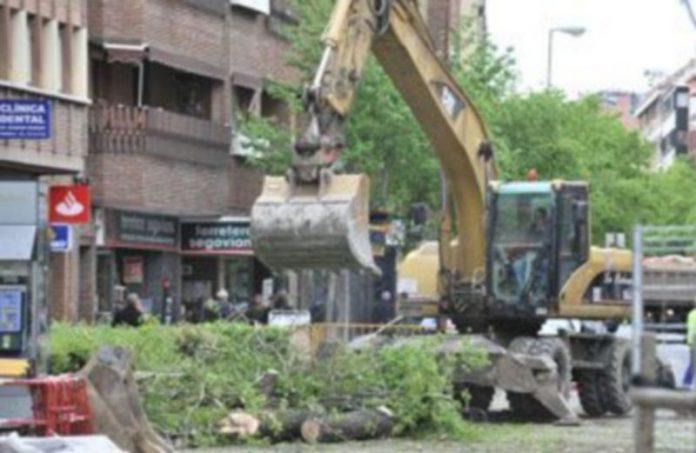 Las primeras talas de arbolado público se realizaron el pasado 14 de abril en la zona de José Zorrilla