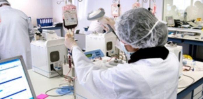 Imagen de un laboratorio donde se trabaja para la conservación de células madre de sangre del cordón umbilical. / Ical