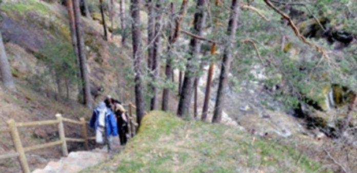 La nueva Reserva de la Biosfera está compuesta por parte de la Sierra del Guadarrama y los Montes de Valsaín. / Kamarero