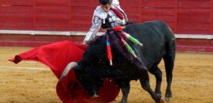 El maestro Morante de la Puebla