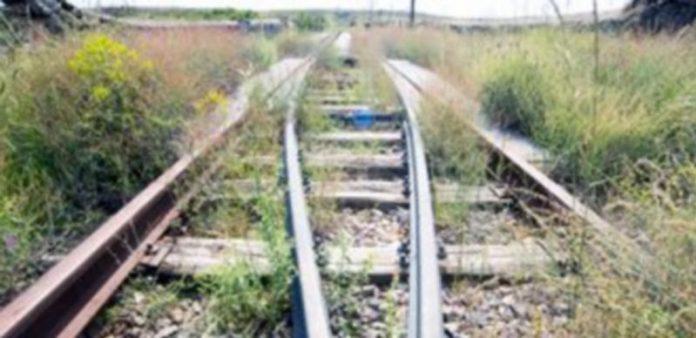 Imagen de archivo del trazado de la antigua vía de la línea de ferrocarril Segovia-Olmedo