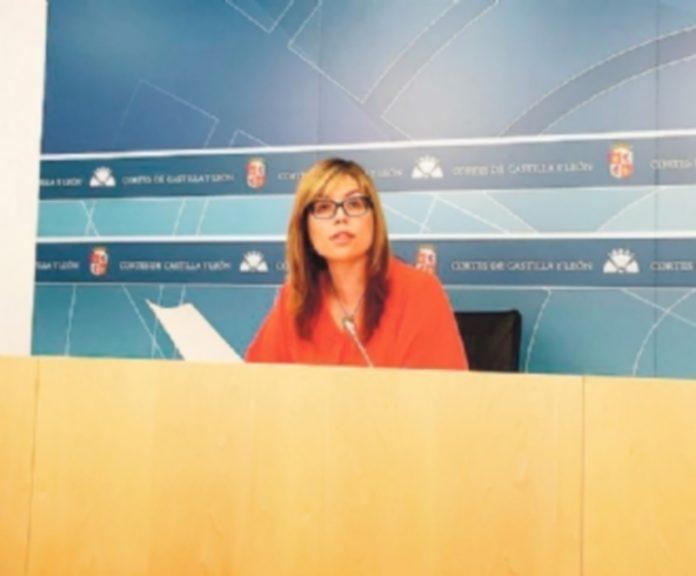 La secretaria de Políticas Sociales del PSOE en Castilla y León