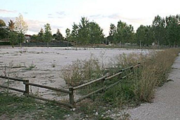 La nueva superficie de plantación alcanzará una superficie de 44