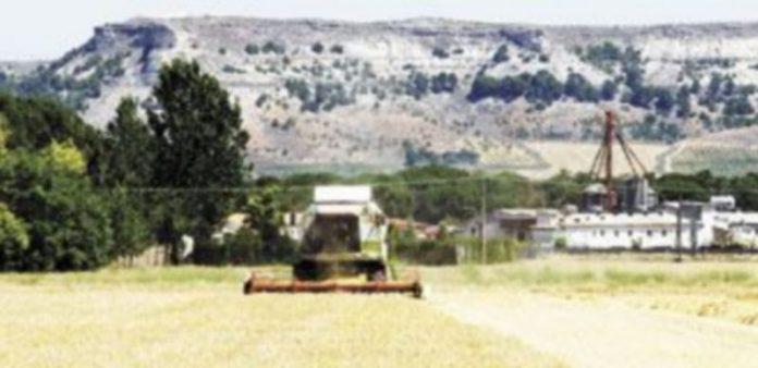 Una cosechadora