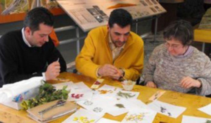 Algunos voluntarios de Iberpistas participaron en el taller de marcapáginas y láminas de flor seca de Apadefim./Apadefim