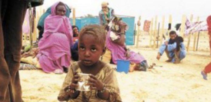 Miles de personas han tenido que huir del norte de Mali e instalarse en campamentos de refugiados en Argelia. / AFP