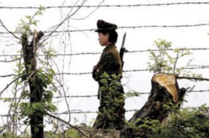 Una soldado de Corea del Norte patrulla junto a la alambrada fronteriza que separa este país de China. / REUTERS