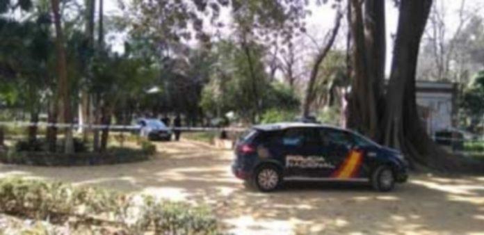 Vehículo de la Policía Nacional en el sevillano parque de María Luisa