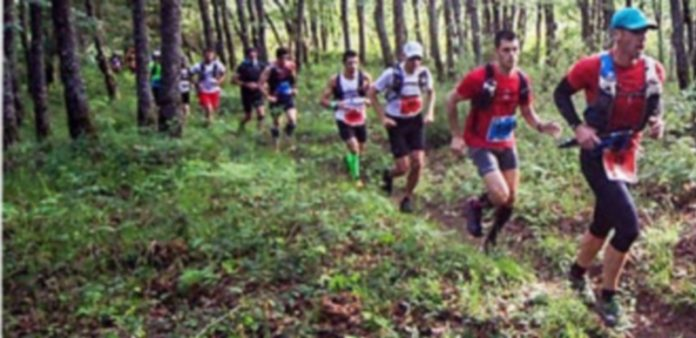 Un momento de la carrera con los corredores en fila. / RIAZA TRAIL CHALLENGE
