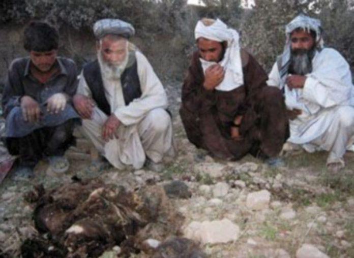 Un grupo de afganos observa los restos de una de las víctimas del bombardeo aliado sobre la región de Farah. / Reuters