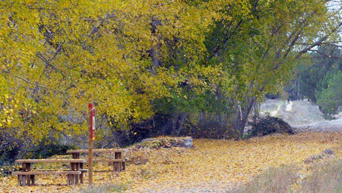 Naturaleza en Segovia. Otoño