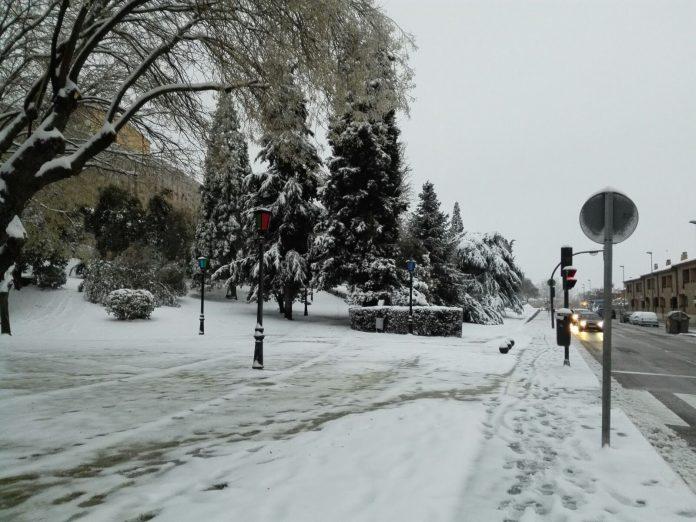Imagen del temporal de nieve a su paso por la ciudad castellanoleonesa de Zamora.