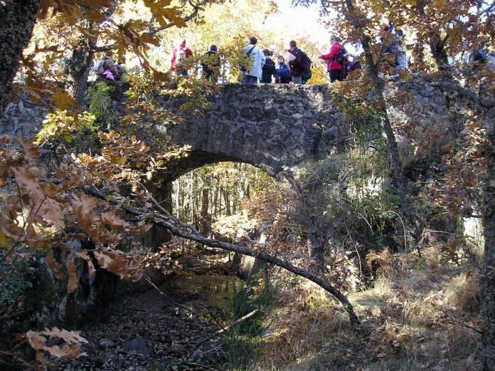 Imagen de archivo de un paseo por las Pesquerías Reales. /