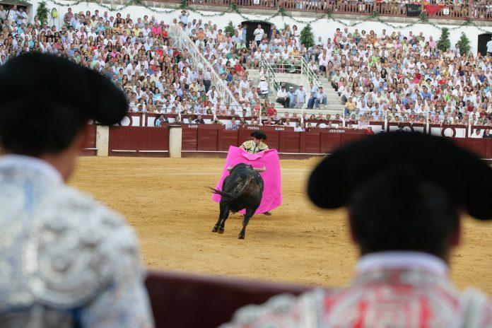 Imagen de archivo de una corrida de toros en la plaza de la malagueta, de la diputación de Málaga.