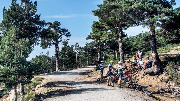 Ciclistas disfrutando de la bici en el Puerto de la Fuenfría. / kamarero