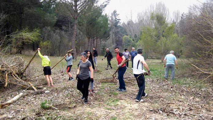Los participantes en la jornada limpiaron la zona recreativa de ramas caídas en los últimos días por los temporales. / el adelantado