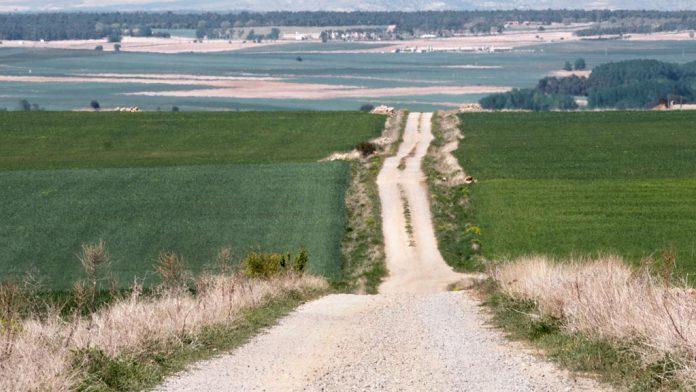 04-1kama_Paisajes-Agricultura_KAM1599