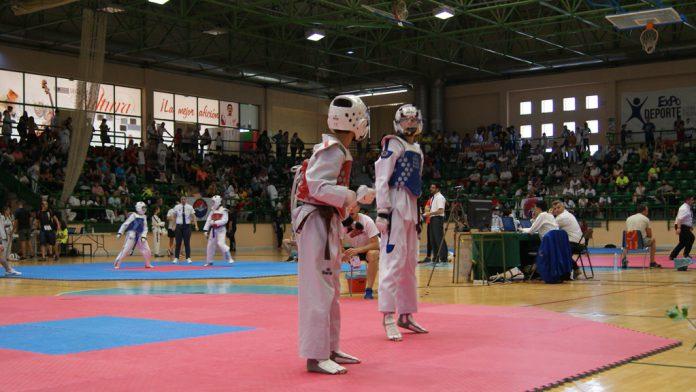 dep3_1-taekwondo