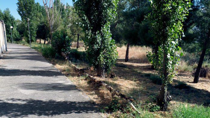 11-1kama_Nueva-Segovia-Urbanizacion-Los-Miradores_KAM5383