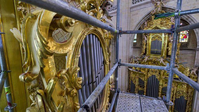 13_1kama-organo-catedral