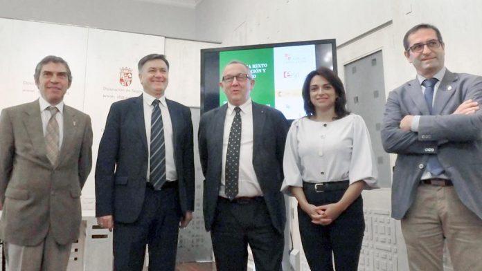 La presentación de los programas tuvo lugar en el Salón del Trono de la Diputación. / el adelantado