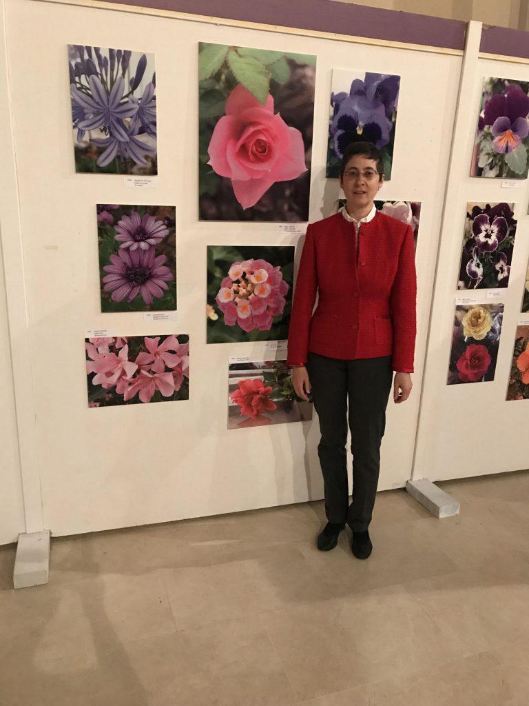'Flores, bellezas de un pequeño mundo' se expone en La Granja
