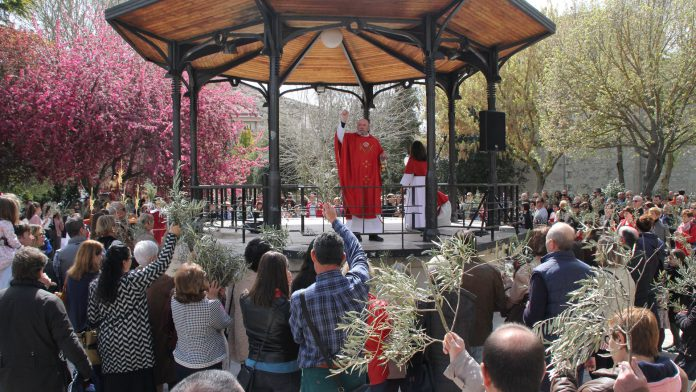 Domingo de Ramos 2019 en Cuéllar