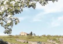 Ermita de Tormejón, a primeros de mayo de 2020. Foto: Alicia Fuentes.