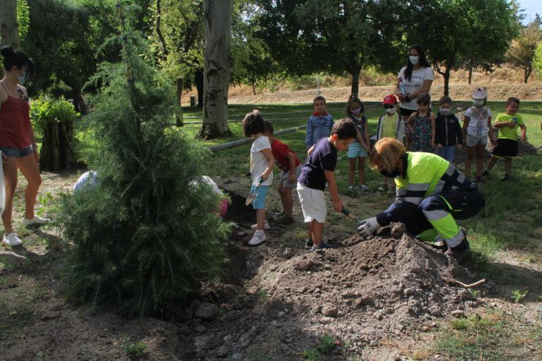 Los niños de Cuéllar renuevan la arboleda del Parque de la Huerta del Duque