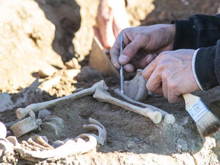 Descubren un nuevo yacimiento en Martín Miguel: 'Las Asomadillas'