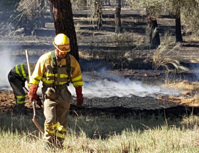 Trabajos de extincion en el incendio de Nieva de 2017