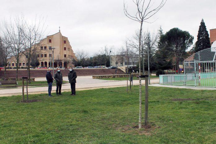 ayuntamiento plantacion arboles parque penascal