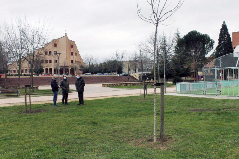 El Ayuntamiento de Segovia repone arbolado en El Peñascal