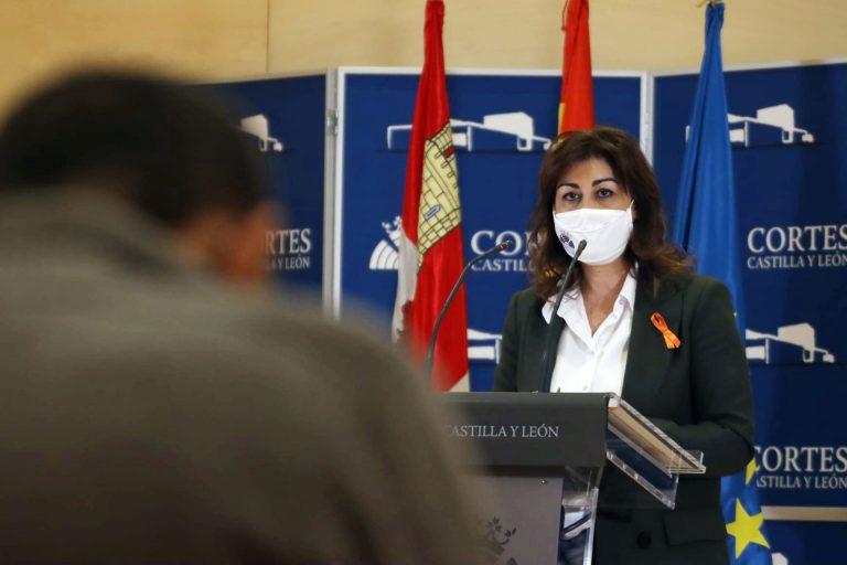Ciudadanos pregunta a la Junta por sus planes para defender la Base Mixta