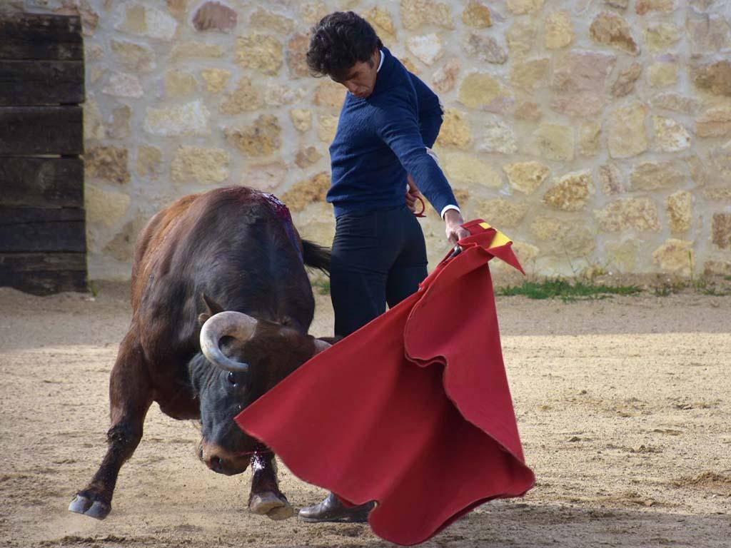 Jose Ruiz Munoz Los Cerros
