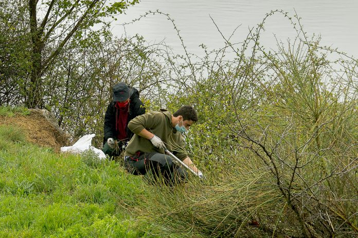 diputacion enreda en verde limpieza rio riaza