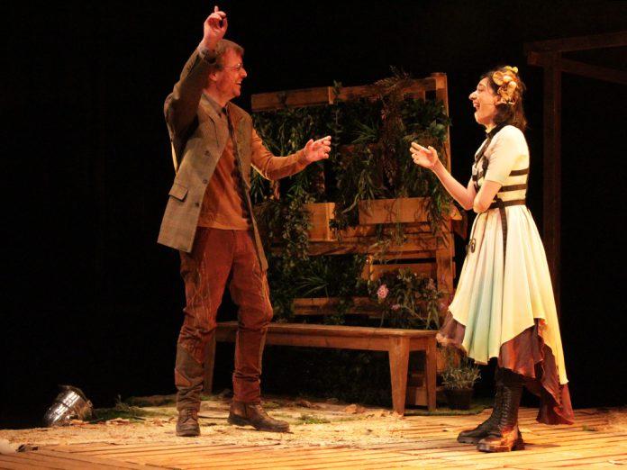 Un momento de la representación de la obra 'Jardines' en el Teatro Juan Bravo. / EL ADELANTADO