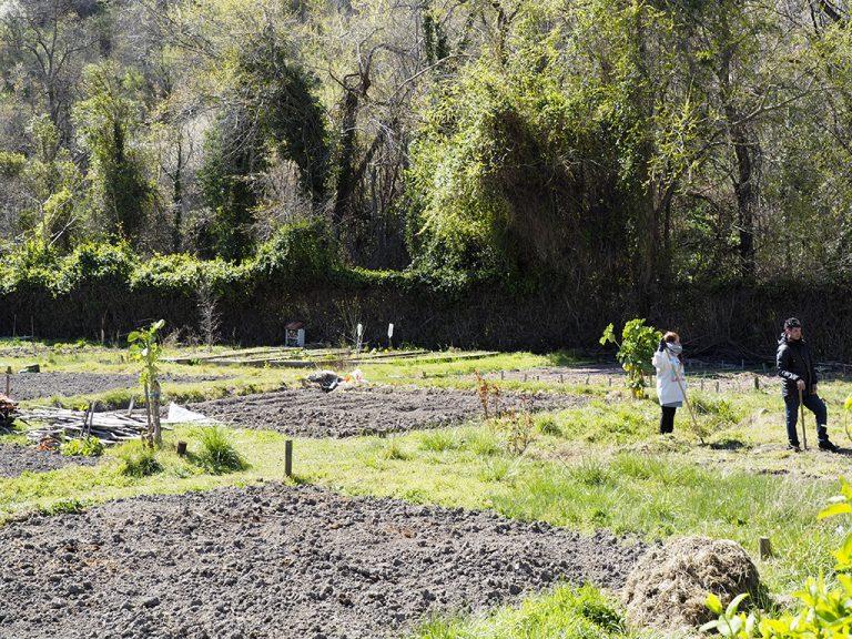 La Junta ratifica el régimen de máxima protección de la cacera de San Lorenzo