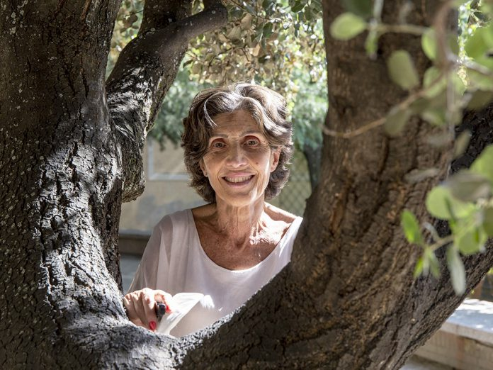 Sanjosé fue concejala de Transportes, Tráfico y Seguridad en Segovia durante dos legislaturas. / NEREA LLORENTE