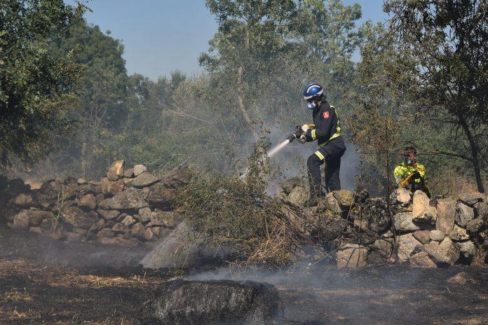 Incendio San cristobal 14