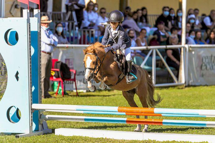 hipica concurso ponis