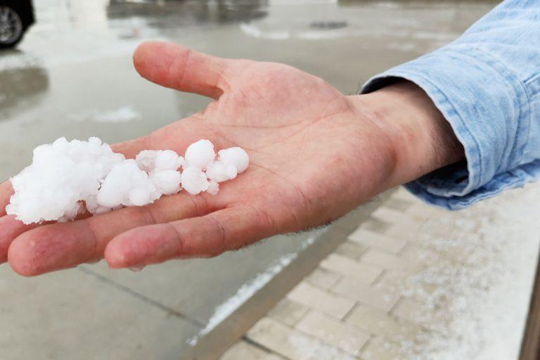 La tormenta de granizo pone en jaque parte del viñedo de la zona de Nieva