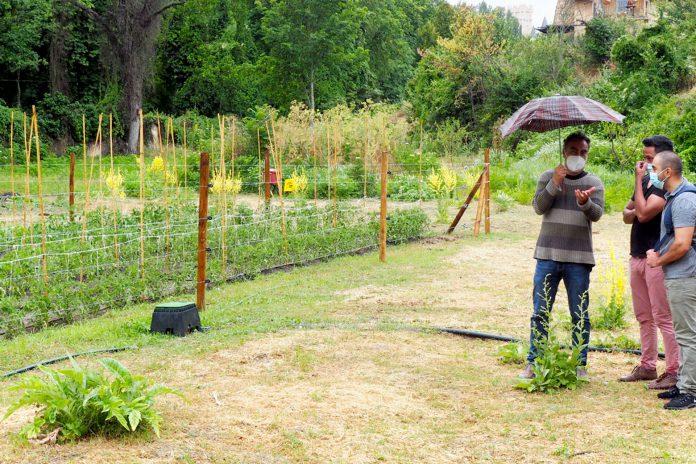 Ayuntamiento RP Proyecto Ecosocial Huerta Grande Conclusiones KAM2947