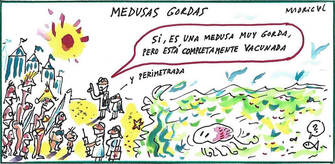 Madrigal Medusa grande