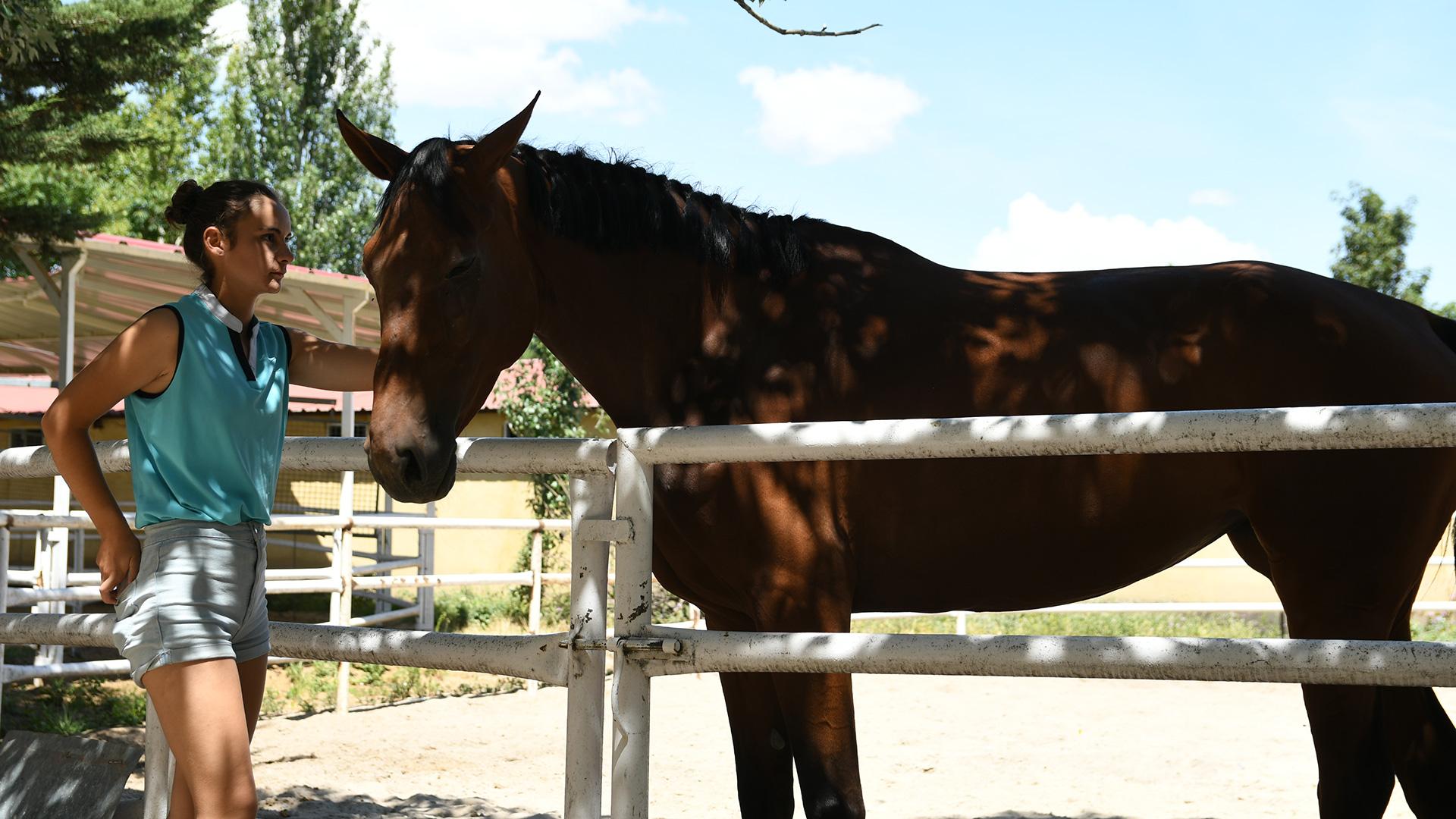 caballo hipica eresma