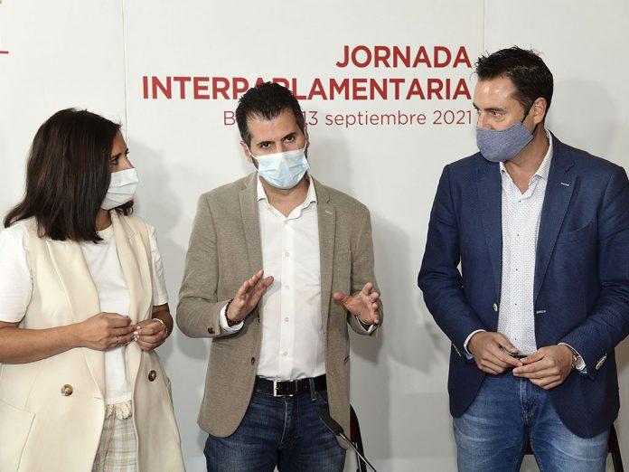 El secretario general del PSOE en Castilla y León (PSCYL), Luis Tudanca. / ICAL