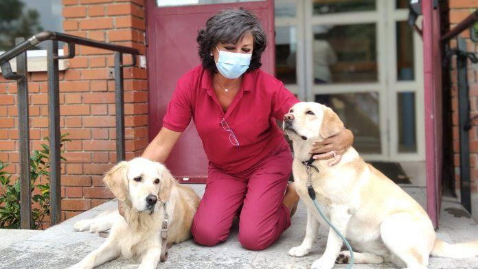 Una de las trabajadoras del Centro de Servicios Sociales con 'Yoko' y 'Pepa', los perros de terapia del programa de la Diputación. / EL ADELANTADO
