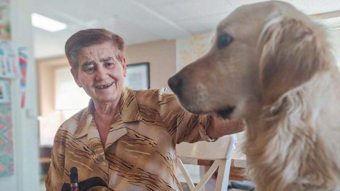 Una de las residentes acaricia al perro. / EL ADELANTADO